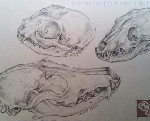 skulls_by_pantiesaurus_dcjy9oh-fullview